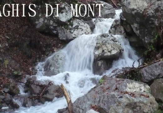 Aghis di Mont